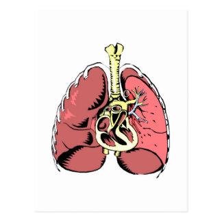 Big Pink Lungs Postcard