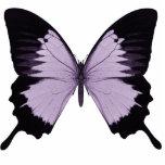 Big Purple & Black Butterfly Photo Cut Outs