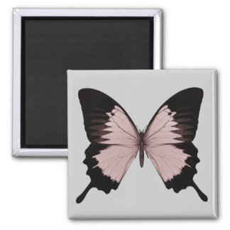 Big Red & Black Butterfly 2 Inch Square Magnet
