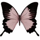Big Red & Black Butterfly Cut Out