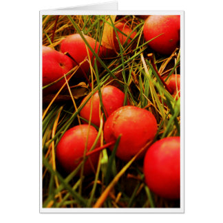 Big Red Little Apples Stationery Note Card