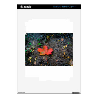 Big Red Maple Leaf Decals For iPad 3