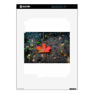 Big Red Maple Leaf iPad 2 Skin