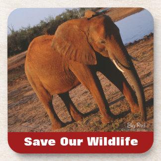 Big Red Save Our Wildlife Beverage Coasters