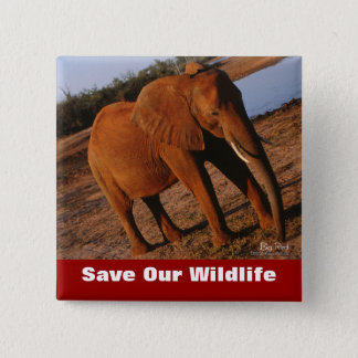 Big Red Save Our Wildlife Button