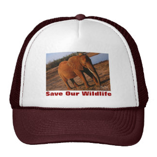 Big Red Save Our Wildlife Hat