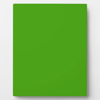 BIG RICH BRIGHT DEEP GREEN BACKGROUND WALLPAPER TE PHOTO PLAQUE
