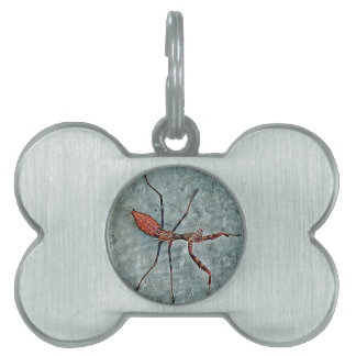 Big Scary Bug Pet ID Tag