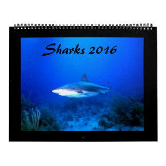 Big Sharks Calendar 2016