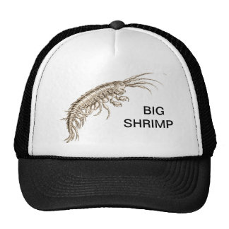 BIG SHRIMP - Baseball Hat