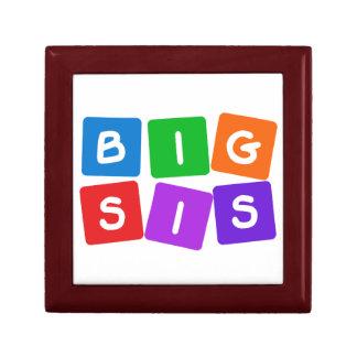 Big Sis gift / jewelry box