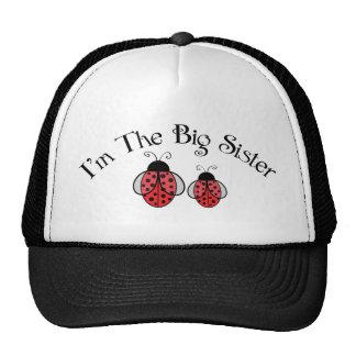 Big Sis Ladybug Trucker Hat