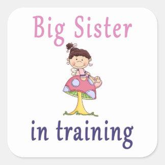 Big Sister In Training Fairy Square Sticker