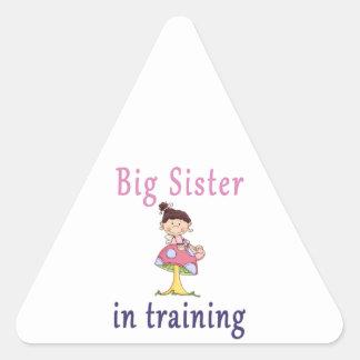 Big Sister In Training Fairy Triangle Sticker