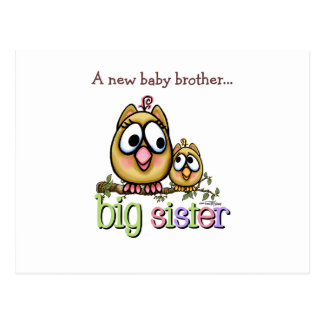 Big Sister - little Brother Postcard