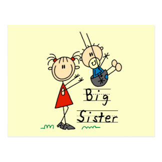Big Sister Little Brother T-shirts and Gifts Postcard