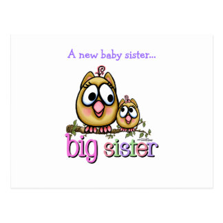 Big Sister little Sis Postcard