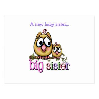 Big Sister little Sis Postcard