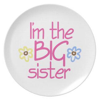 Big Sister Dinner Plates