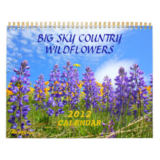 Big Sky Country Wildflowers 2012 Calendar