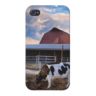 Big Sky Cow and Barn iPhone Case