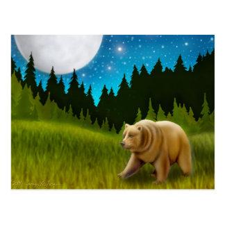 Big Sky Grizzly Postcard