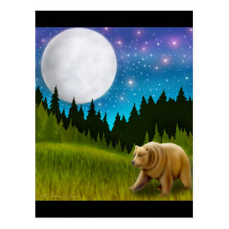 Big Sky Grizzly Postcard