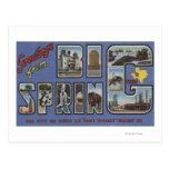 Big Spring, Texas - Large Letter Scenes Postcard