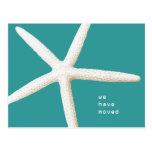 Big Starfish Moving Coast Custom Postcard