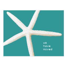 Big Starfish Moving Coast Custom Postcard at Zazzle