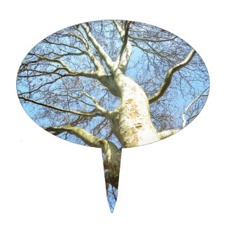 Big Sunny Tree Branches in Heavenly Blue Sky Cake Topper