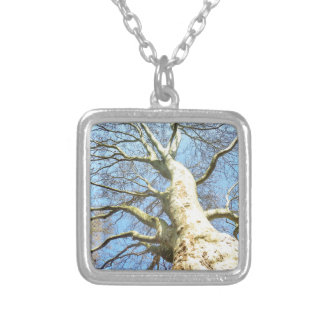 Big Sunny Tree Branches in Heavenly Blue Sky Square Pendant Necklace