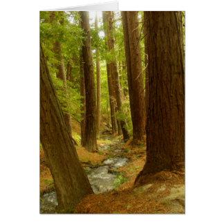 Big Sur, California Card