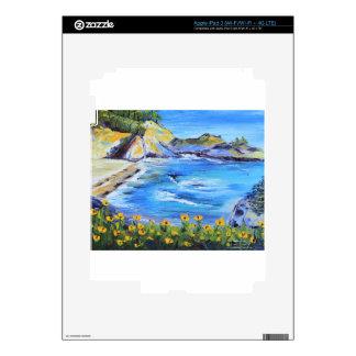 Big Sur California iPad 3 Skins