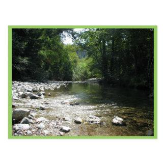 Big Sur Campground - Stream Flowing Through Trees Postcard