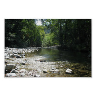 Big Sur Campground - Stream Flowing Through Trees Poster