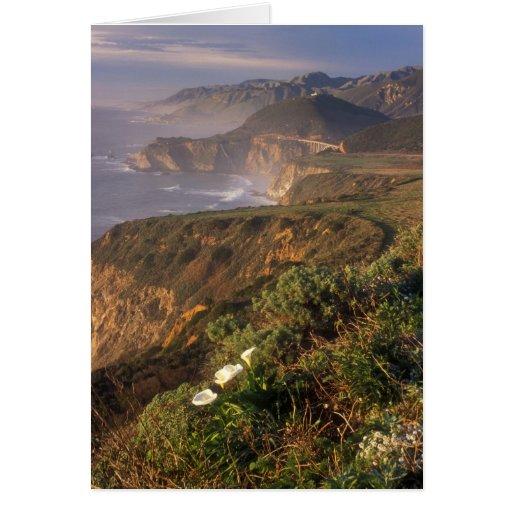Big Sur Coast California Card