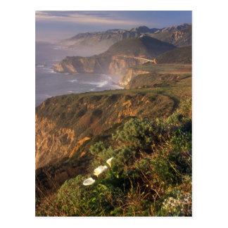 Big Sur Coast California Postcard