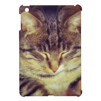 Big Tabby Cat 5 iPad Mini Cover