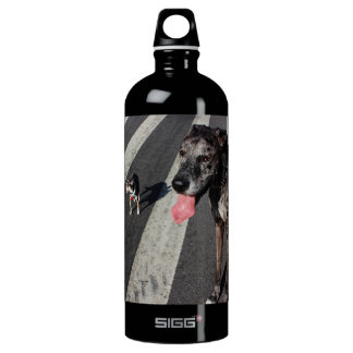 Big & Tall, Photo of Great Dane & Chihuahua Dogs SIGG Traveler 1.0L Water Bottle