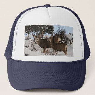 Big three point trucker hat