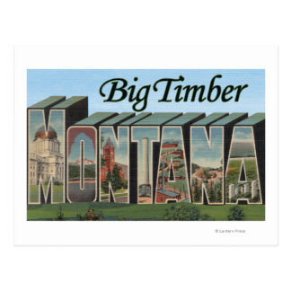 Big Timber, Montana - Large Letter Scenes Postcard