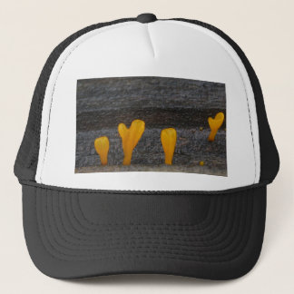 Big-toothed! Trucker Hat