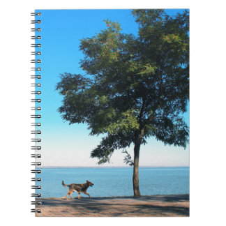 Big tree and the walking path along the lake shore notebook