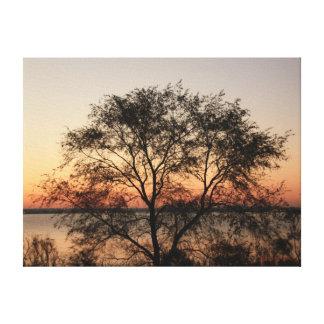Big Tree Canvas Print