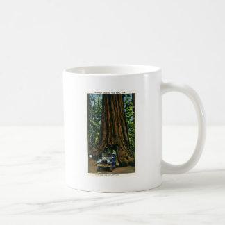 Big Tree Wawona, Mariposa Grove, CA Classic White Coffee Mug
