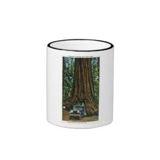 Big Tree Wawona, Mariposa Grove, CA Ringer Coffee Mug
