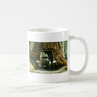 Big Tree Wawona, Mariposa Grove, CA Vintage Classic White Coffee Mug