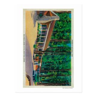 Big Trees Lodge in The Mariposa Grove Postcard