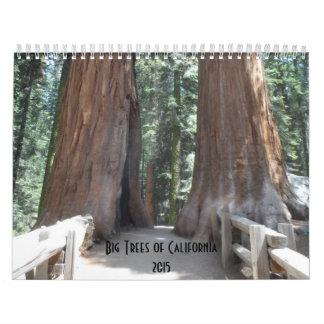 Big Trees of California 2015 Wall Calendars